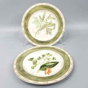 American Atelier Bouquet Garni Salad Plates Setof2